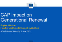 AEIAR General Assembly, 2021, June the 2nd